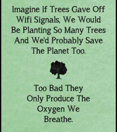 Tänk så många träd vi skulle plantera om träd kunde användas för Wi-Fi -- synd att dom endast producerar det syre vi andas.