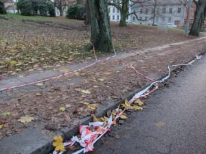 Nedskräpat Göteborg. Städning efter trädingreppen i Haga är inte prioriterat. Foto: Chris CederCC BY 4.0 Nedskräpat Göteborg. Städning efter trädingreppen i Haga är inte prioriterat.